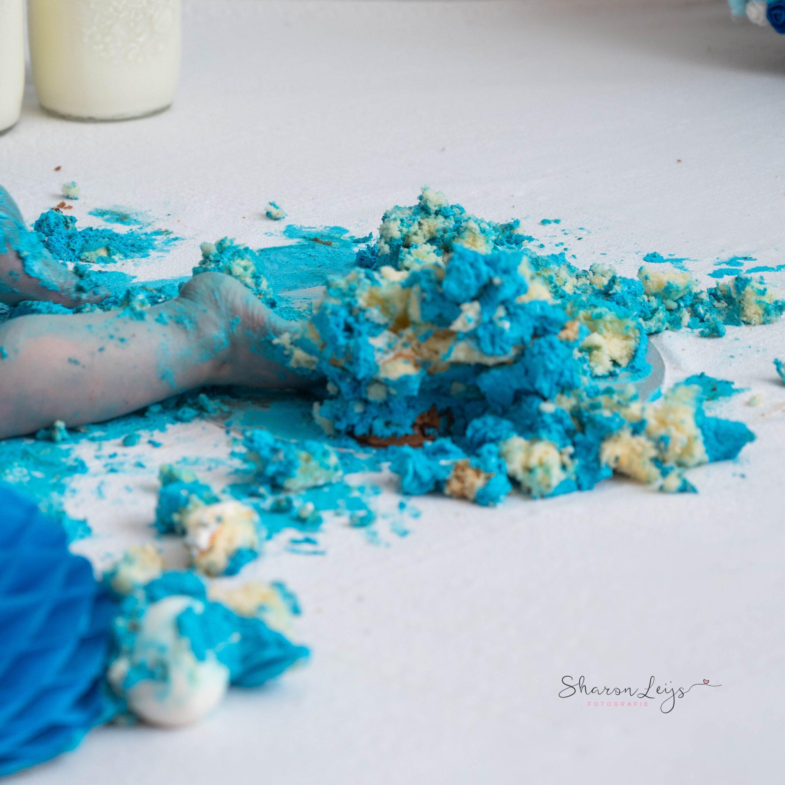 Sharon Leijs Fotografie cakesmash cookiemonster Dordrecht Rotterdam Hoekschewaard Drechtsteden Zuid-Holland 5